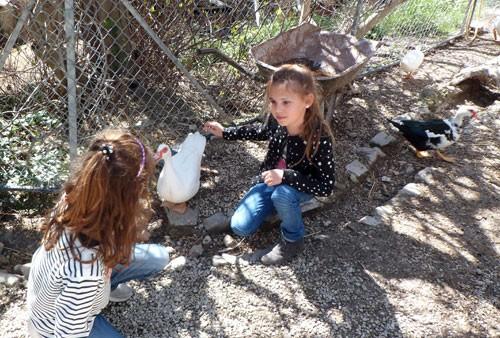 Petite Ferme : des enfants avec les canards